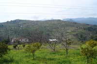 Los-Arenalejos